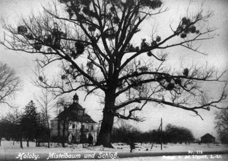 1916 р. (?) Загальний вигляд брами