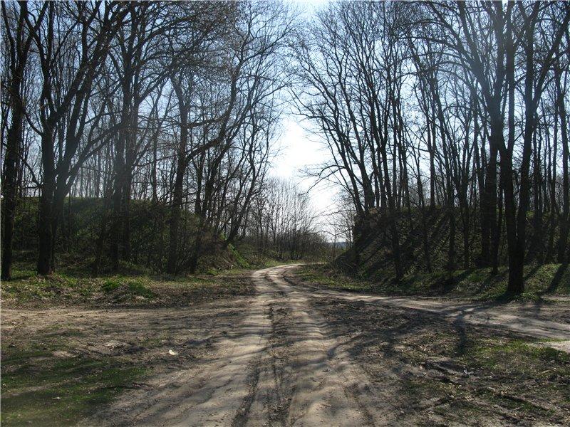 2009 р. Дорога через вали городища