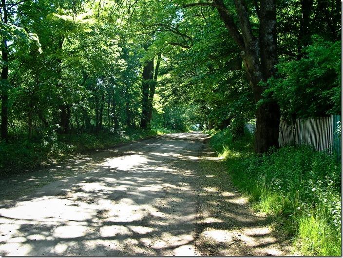 Дорога в парку (?)