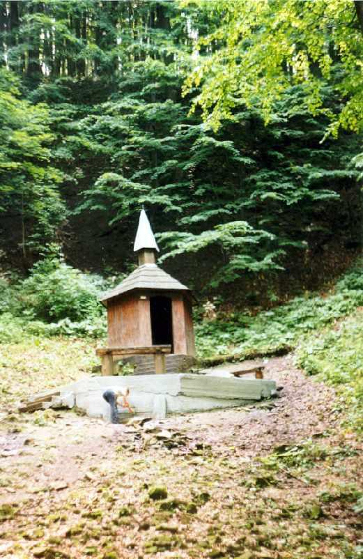 [2006 р.] Криниця