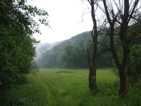 [2003..2006 р.] Дорога до Воловця після дощу