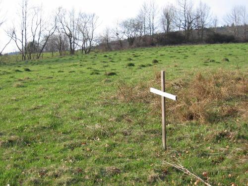 Братська могила 2-ї світової війни
