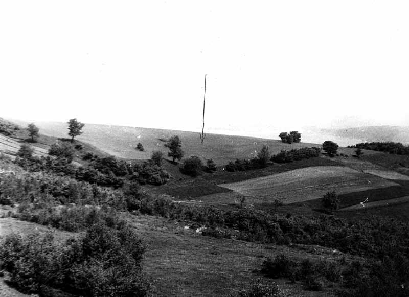 Буківнівнське городище