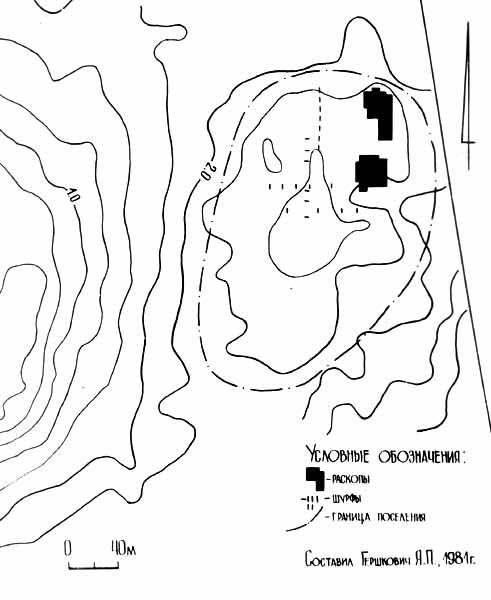 Новокиївське поселення
