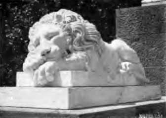 [1913 р.] Скульптура лева