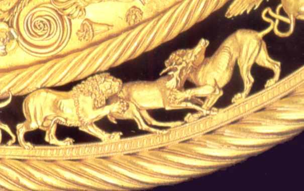 Леви терзають оленя (34 - 36)