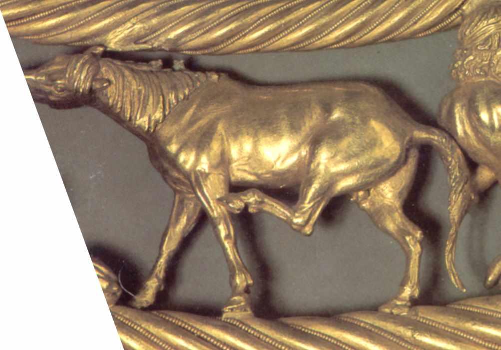 Кінь (7)