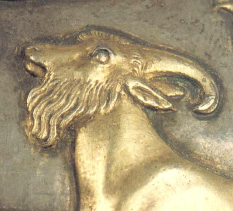 Голова козла