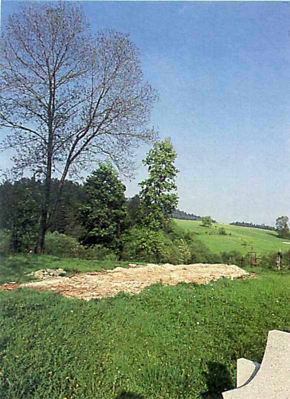 1986 р. Загальний вигляд церквища