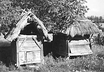 2003 р. Куча – с. Гарячинці