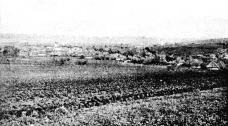 Загальний вид Суботова (з кладовища)