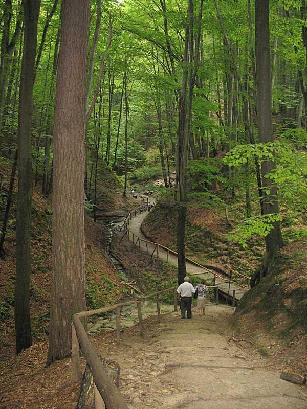 2006 р. Фрагмент дороги