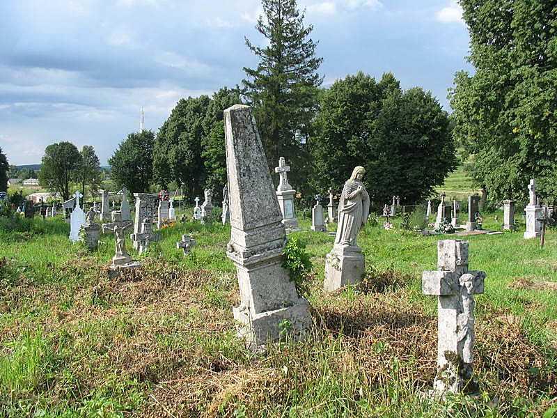 2011 р. Загальний вигляд старого цвинтаря (3)
