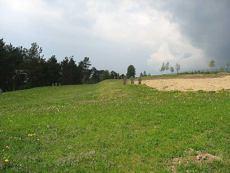 2007 р. Фрагмент цвинтаря з хрестами