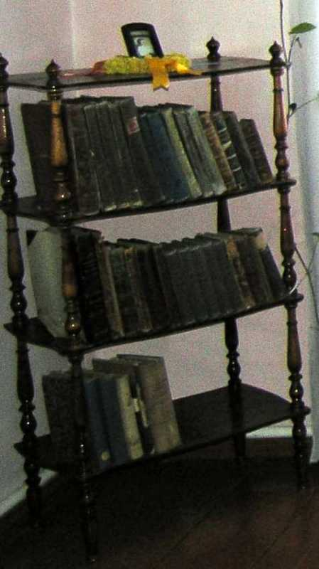 Bookcase with the books - House in…