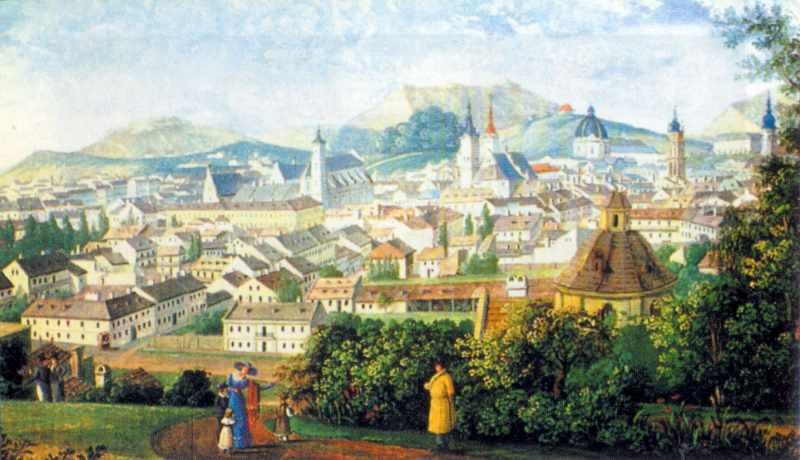 Бл. 1825 р. Вид Львова з гір…