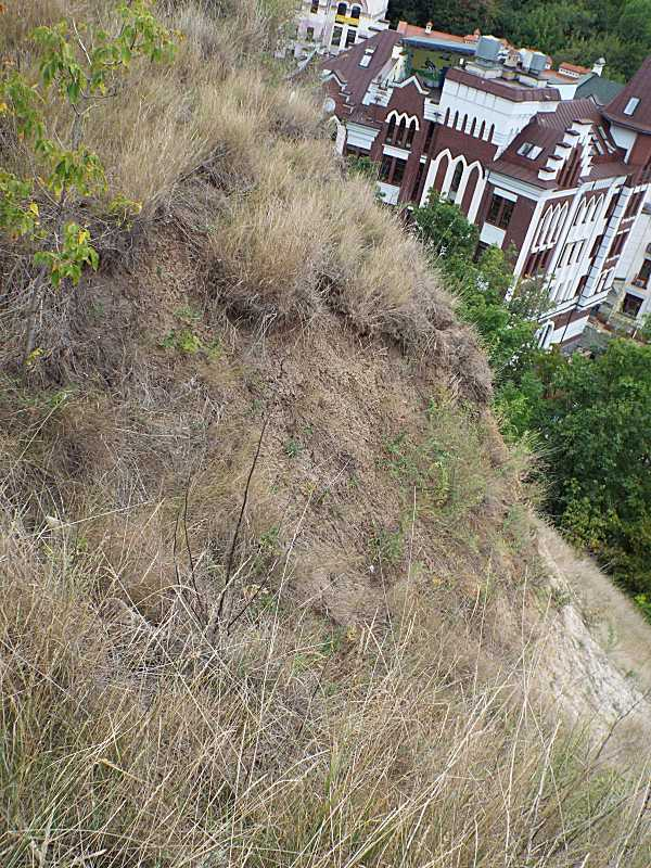 Лучно-степовий схил Замкової гори