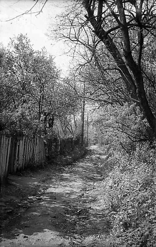 1974 р. Вулиця на Звіринці