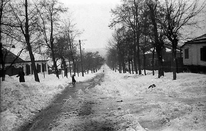 1969 р. Вулиця з танучим снігом…