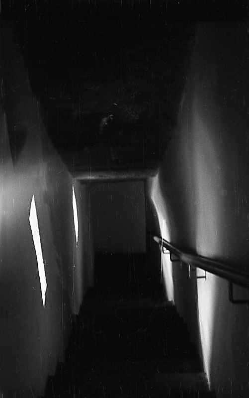 1976 р. Інтер'єр сходів на хори…