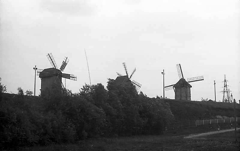 1976 р. Вітряки