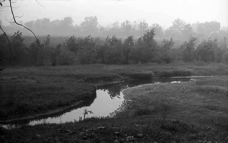 1976 р. Вид на річку Есмань