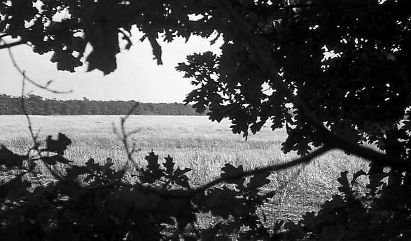 1976 р. Краєвид біля Кіровограда