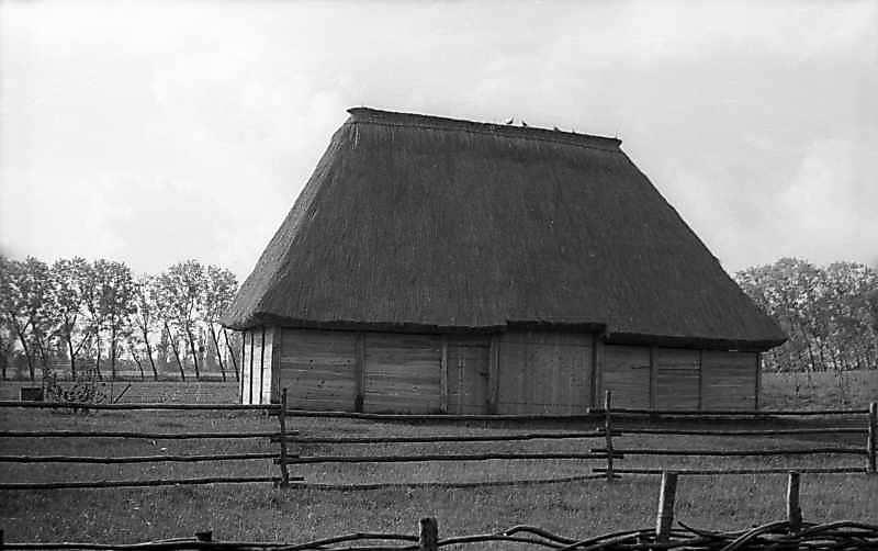 1976 р. Фронтальний вигляд