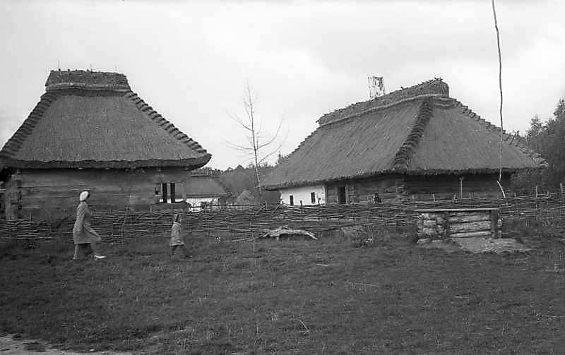 1976 р. Загальний вигляд (комора, хата)
