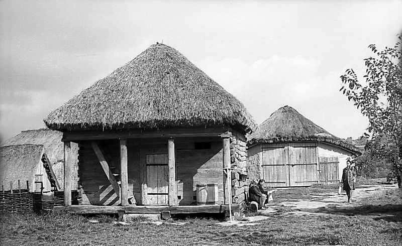 1976 р. Комора і клуня