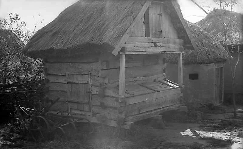 1976 р. Саж і курник