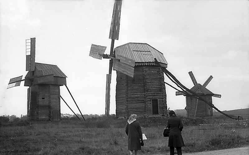 1976 р. Загальний вигляд групи вітряків з півночі