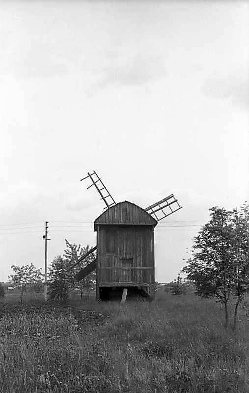 1977 р. Загальний вигляд з позиції С3