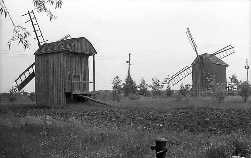 1977 р. Вітряки 13 (ліворуч) і 12 (праворуч)