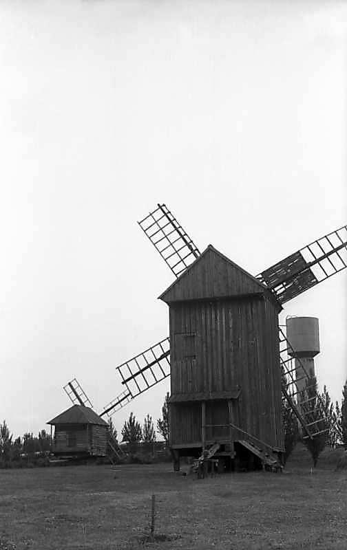 1977 р. Вітряки 10 і 9