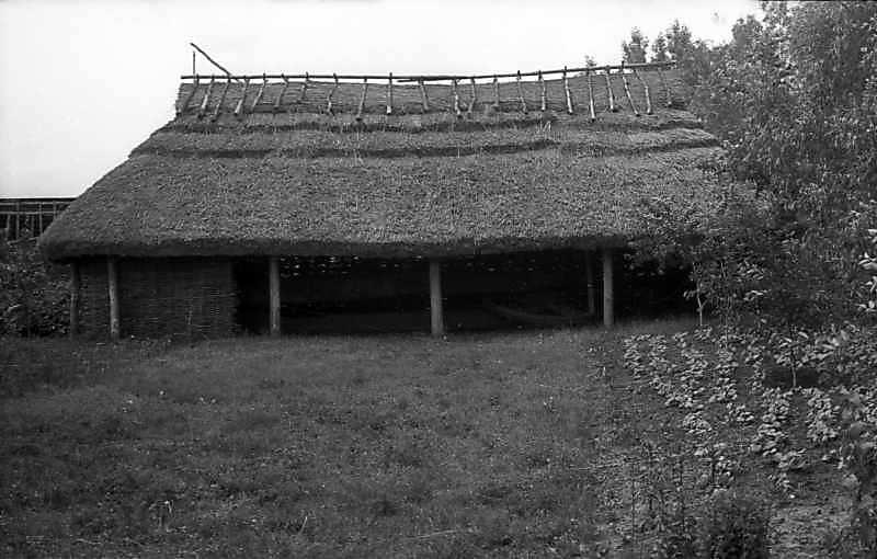 1977 р. Олійня