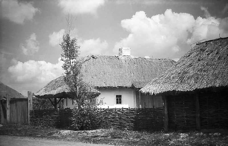 1977 р. Загальний вигляд з боку вулиці (ворота, криниця, хата, повітка)