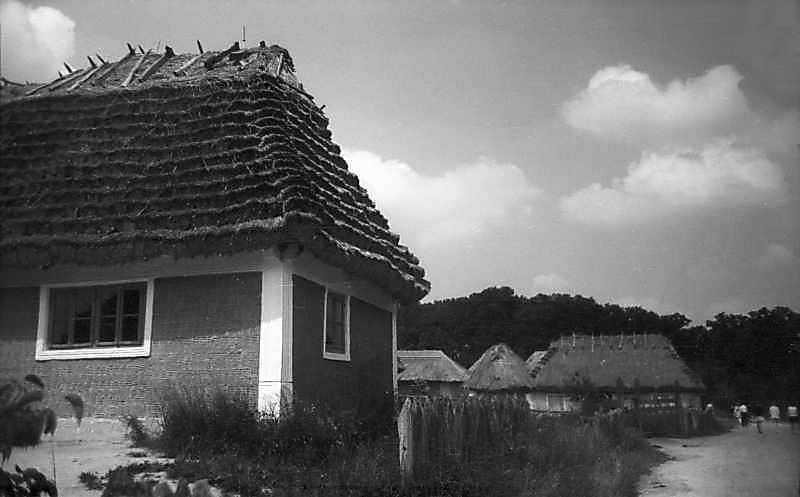 1977 р. Перспектива вулиці (хата з Кадіївців – садиба з Яришева)