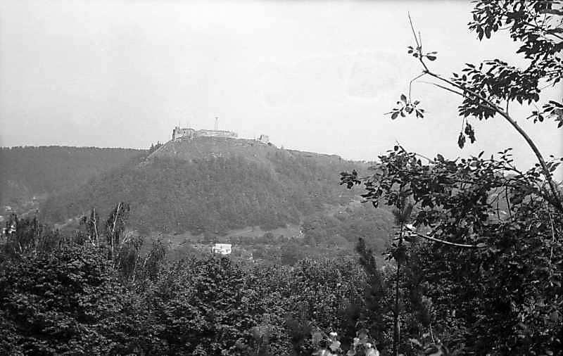 1977 р. Вид на Замкову гору з…