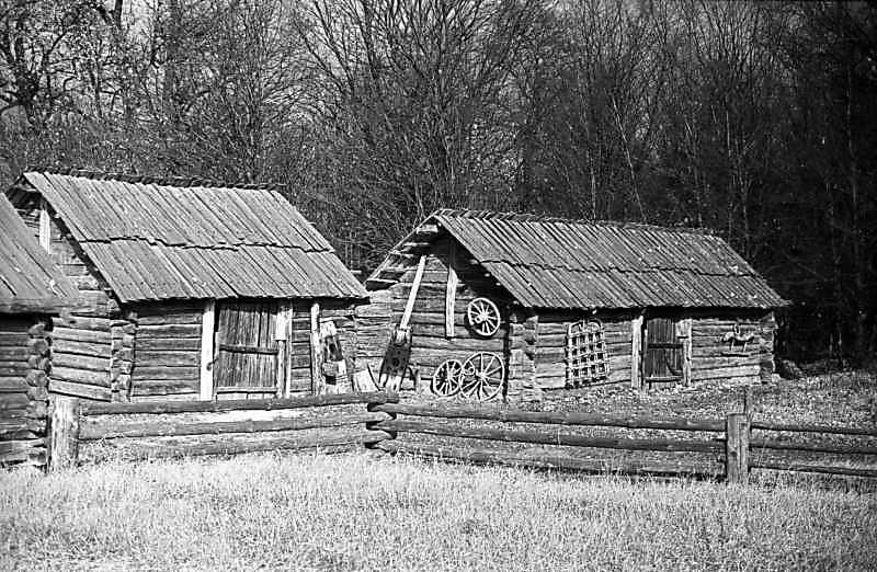 1977 р. Тік і хлів
