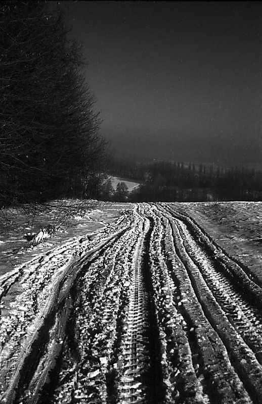 1977 р. Засніжена дорога на узліссі.