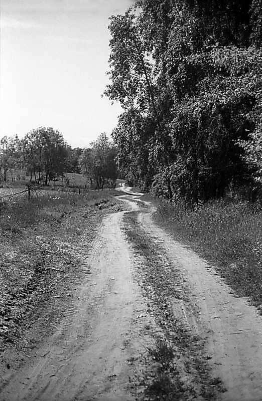 1978 р. Дорога на узліссі
