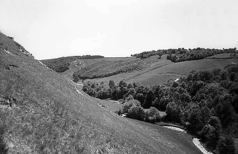 1978 р. Яр і струмок на захід від…