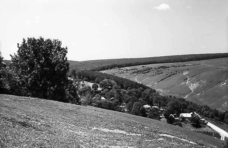 Фрагмент правобережного села і яр