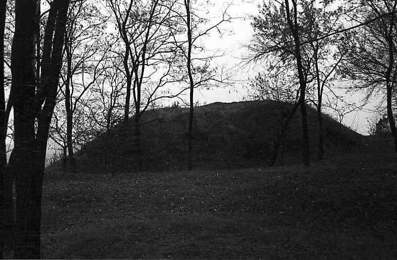 1978 р. Інший великий курган