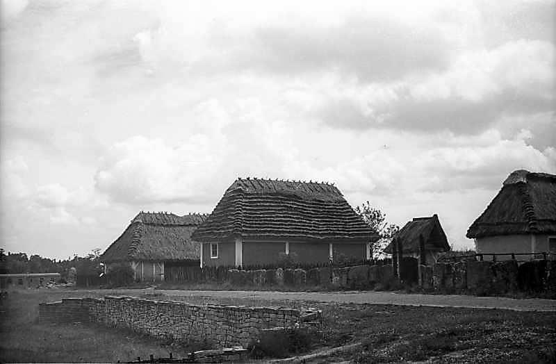 1979 р. Перспектива вулиці (садиба з Кадіївців – комора з Яришева)