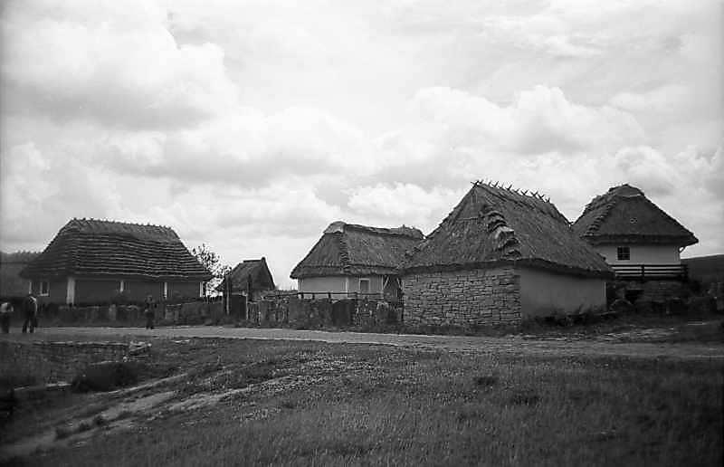 1979 р. Перспектива вулиці (хата з Кадіївців – садиба з Яришева)