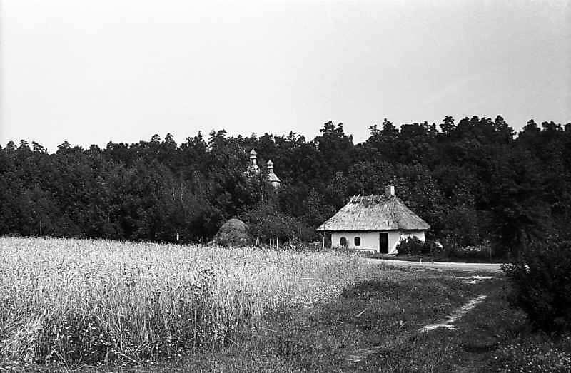 1980 р. Загальний вигляд