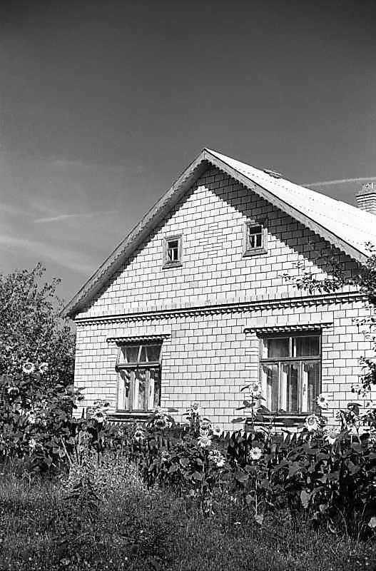 1980 р. Хата 3 (фрагмент)
