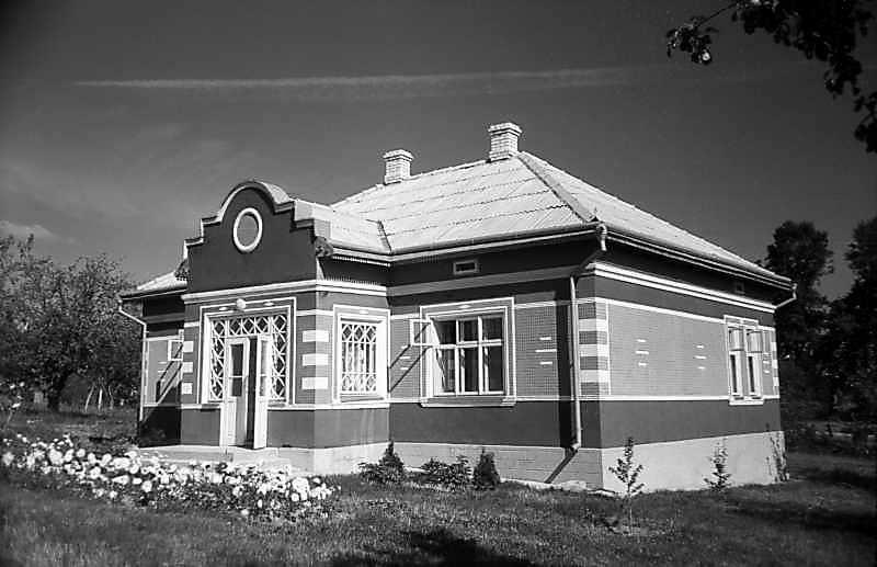 Будинок із с.Іване-Пусте